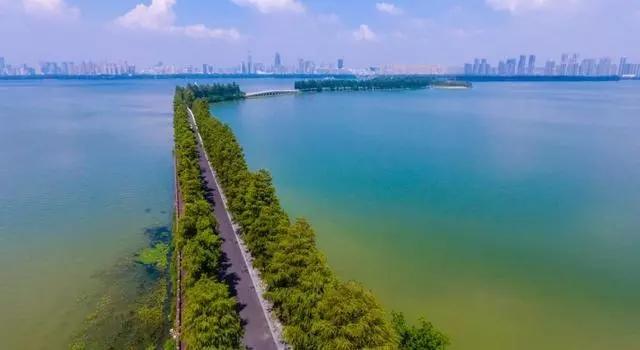 15东湖6.webp.jpg