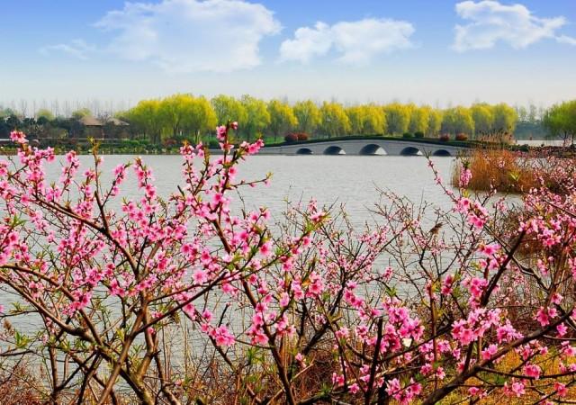 2017年4月9日 8:30——13:00 赛事地点:江苏省南通市通州区开沙岛东沙